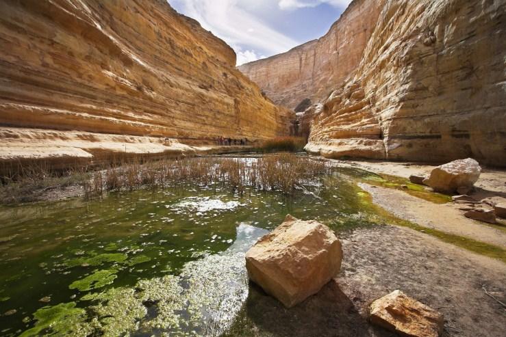 The pools en avdat negev israel