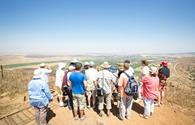 Galilee & Golan Heights Tour, 4 Days