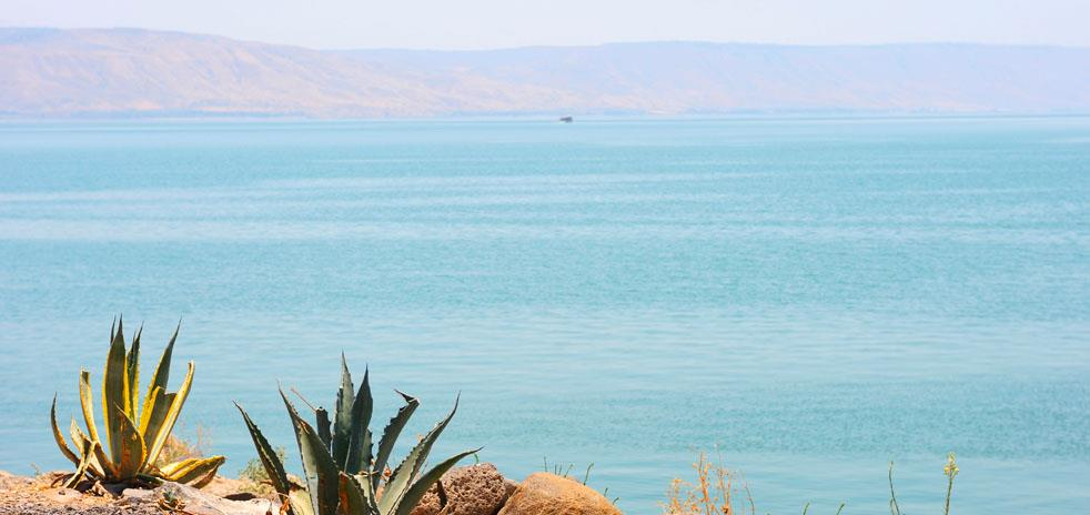Galilee and Golan Hotels